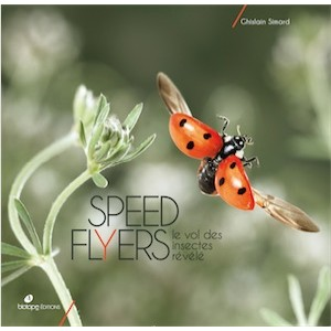 SPEED FLYERS
