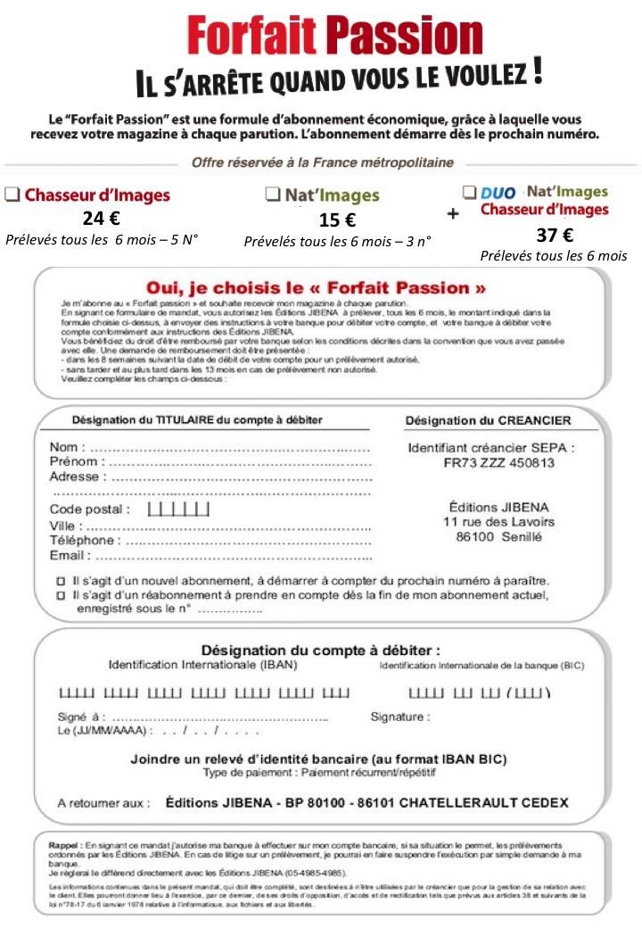 employee resume form microsoft word resume creator ucf