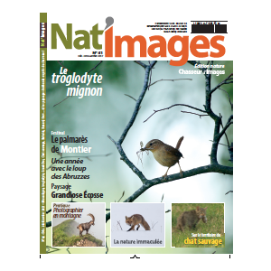 NAT'IMAGES 41 - DECEMBRE/JANVIER 2017