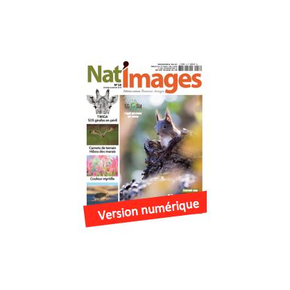 Nat'Images numérique 58
