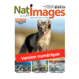 Nat'Images numérique 59