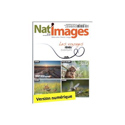 Nat'Images numérique 63