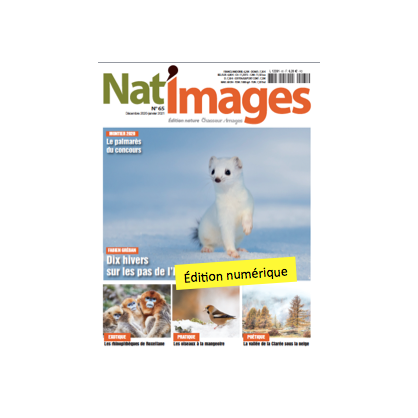 Nat'Images numérique 65