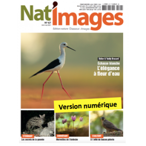 Nat'Images numérique 64