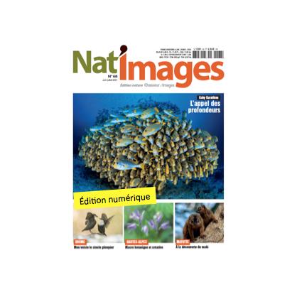 Nat'Images numérique 68